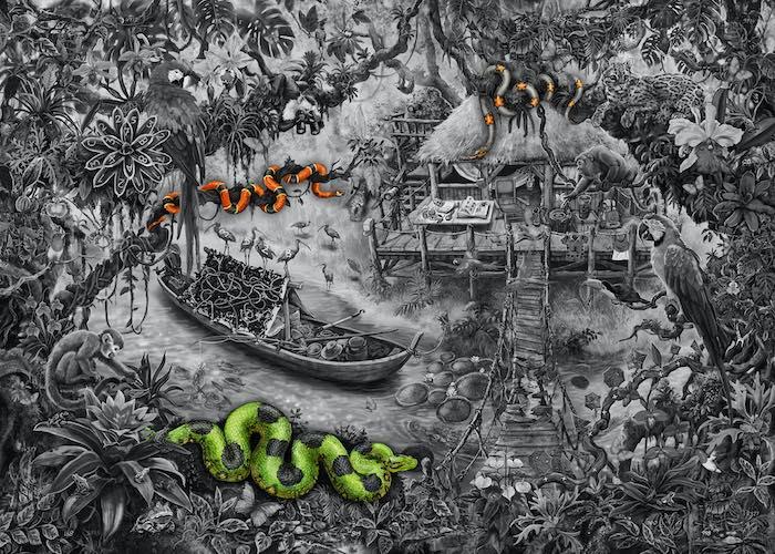 Dschungel_5-Schlangen